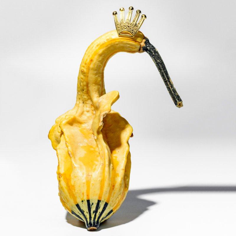 Le règne des fruits