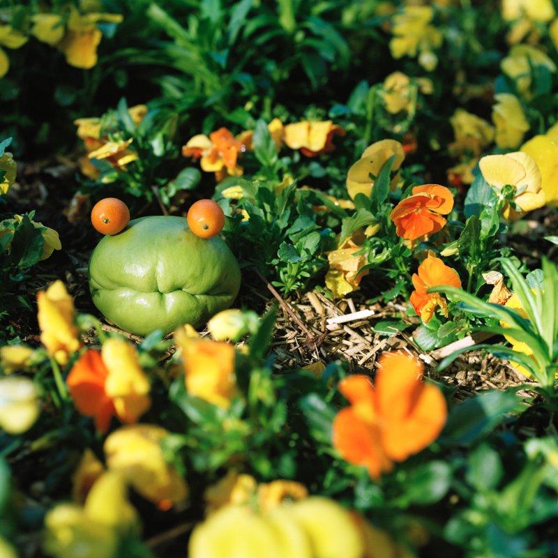 Les Fruits de mon imagination # 2