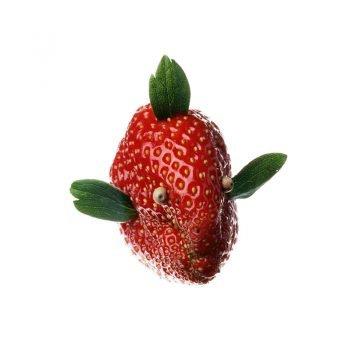 Les Fruits de mon imagination Part 1